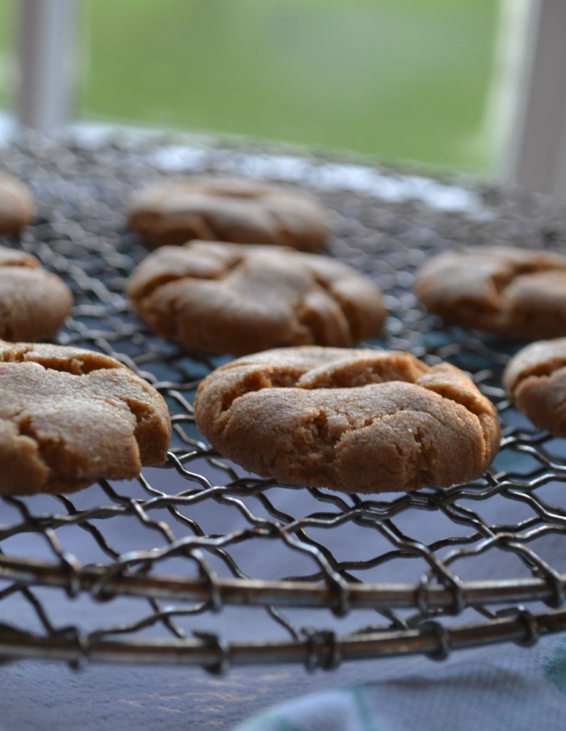 Homebaked_ginger_biscuits