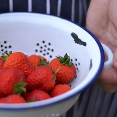 strawberries_from_garden