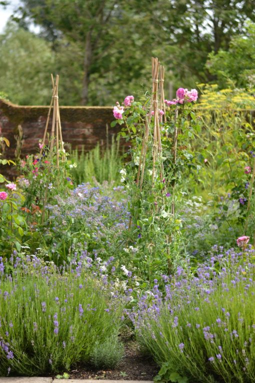 All_Hallows_herb_garden_potager