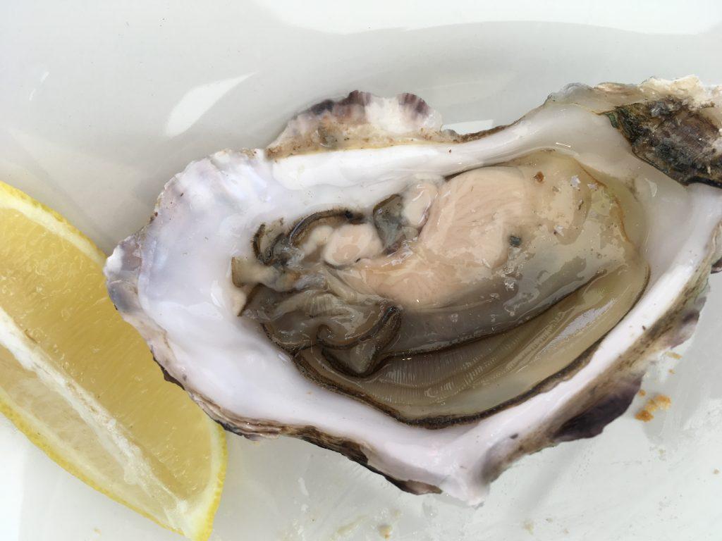 porlock_oysters