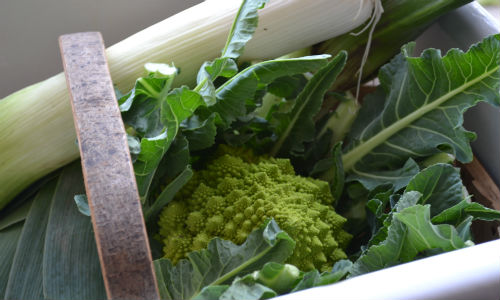 Leeks and romanesco