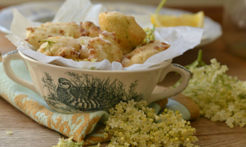 RECIPE: Elderflower Fritters